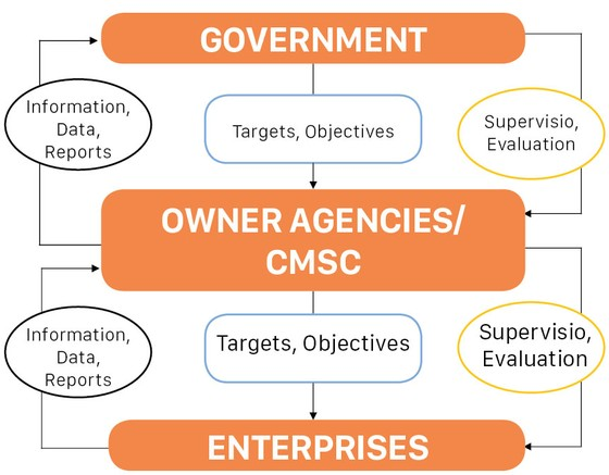 Supervision of State Owned Enterprises ảnh 2