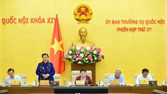 Phó Chủ tịch Thường trực Quốc hội Tòng Thị Phóng phát biểu tại phiên họp. Ảnh: VIẾT CHUNG