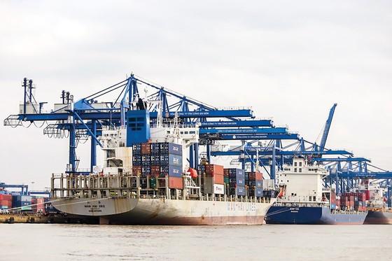 TPHCM tìm giải pháp  đẩy mạnh xuất khẩu  ảnh 1