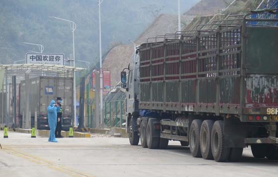Xe hàng tại cửa khẩu Tân Thanh chuẩn bị xuất hàng sang Trung Quốc. (Ảnh: Quang Duy/TTXVN)