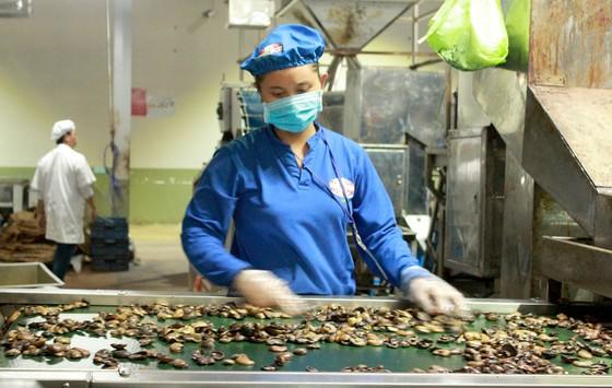 Cơ hội cho nông sản Việt vào thị trường EU ảnh 1