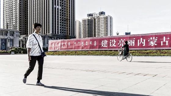 Trung Quốc 2020 - Năm của những thảm họa và dị tượng ảnh 8