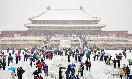 Trung Quốc 2020 - Năm của những thảm họa và dị tượng ảnh 6