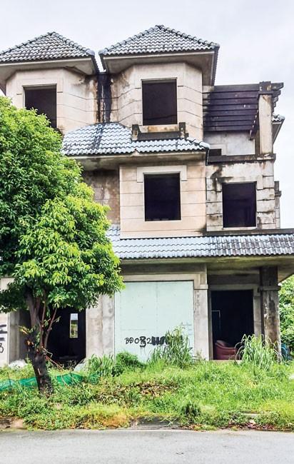 Quá lãng phí nhà, đất bỏ hoang ảnh 1