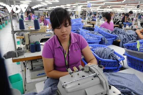 Nhiều mặt hàng của Việt Nam được hưởng lợi từ EVFTA ảnh 1
