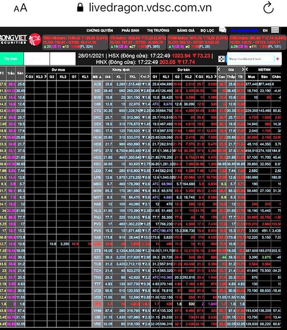 Thị trường chứng khoán giảm sâu ảnh 1