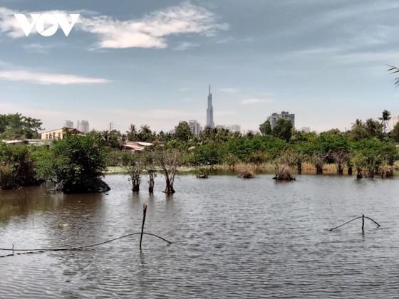 """Sống khổ tại dự án """"treo"""" gần 30 năm ở bán đảo Bình Quới - Thanh Đa, TPHCM ảnh 4"""