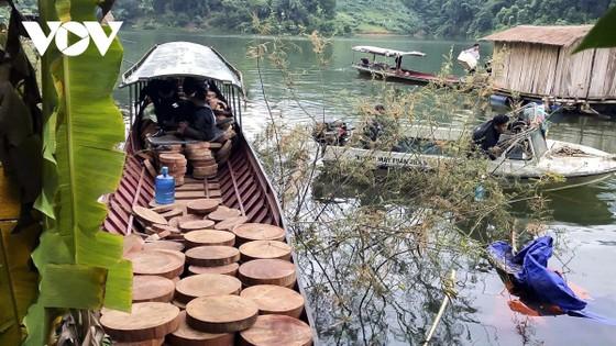Lỗ hổng pháp lý truy xuất nguồn gốc lâm sản: Gỗ luồn rừng về xuôi? ảnh 1