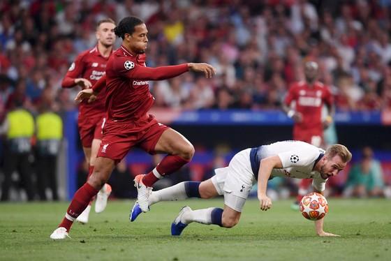 Van Dijk (Liverpool) và Harry Kane (Tottenham)