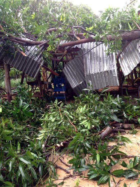Tan hoang sau bão số 12 ảnh 1