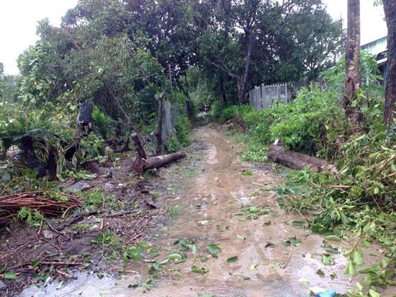 Tan hoang sau bão số 12 ảnh 3