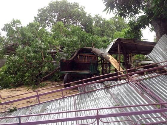 Tan hoang sau bão số 12 ảnh 5