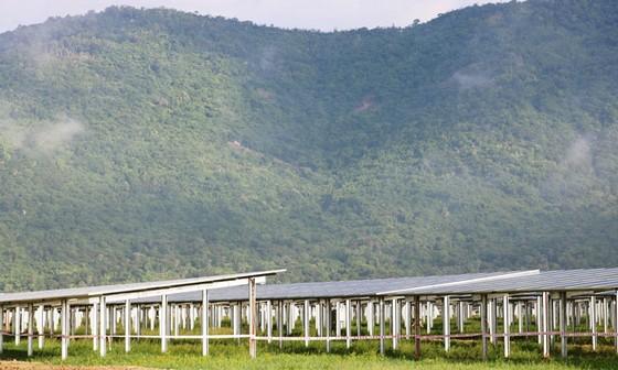 Sao Mai khánh thành nhà máy điện mặt trời 6.000 tỷ đồng ảnh 1