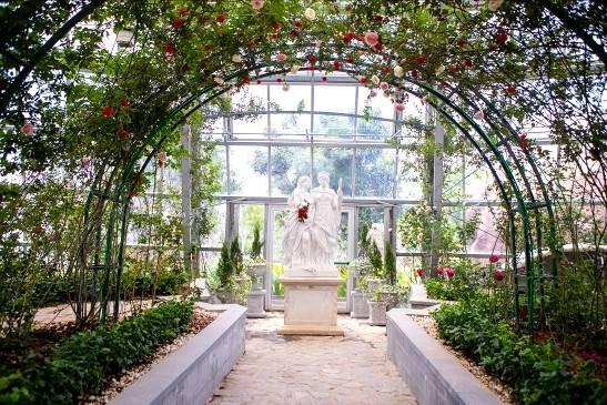 """Khám phá khu vườn """"kỳ hoa dị thảo"""" trên đảo kỷ lục Nha Trang ảnh 1"""