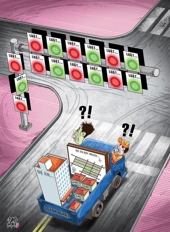 Xung đột pháp lý trong đầu tư xây dựng: Chồng chéo giữa các luật ảnh 1