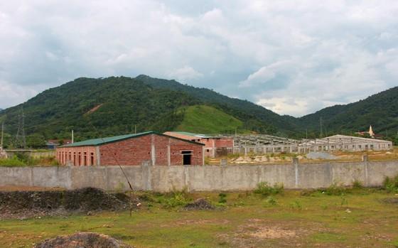Nhiều dự án tại Khu công nghiệp Đại Kim bị trì trệ, dở dang, bỏ hoang ảnh 1