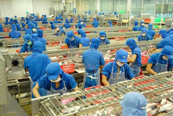 Giá  trị cốt lõi của Tập đoàn Sao Mai ảnh 2