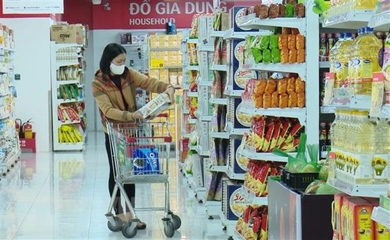 Nghi quyet Phien hop Chinh phu thuong ky thang 3 nam 2020 hinh anh 3