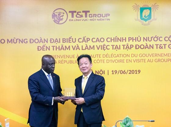 T&T Group ký kết mua toàn bộ hạt điều Bờ Biển Ngà ảnh 2