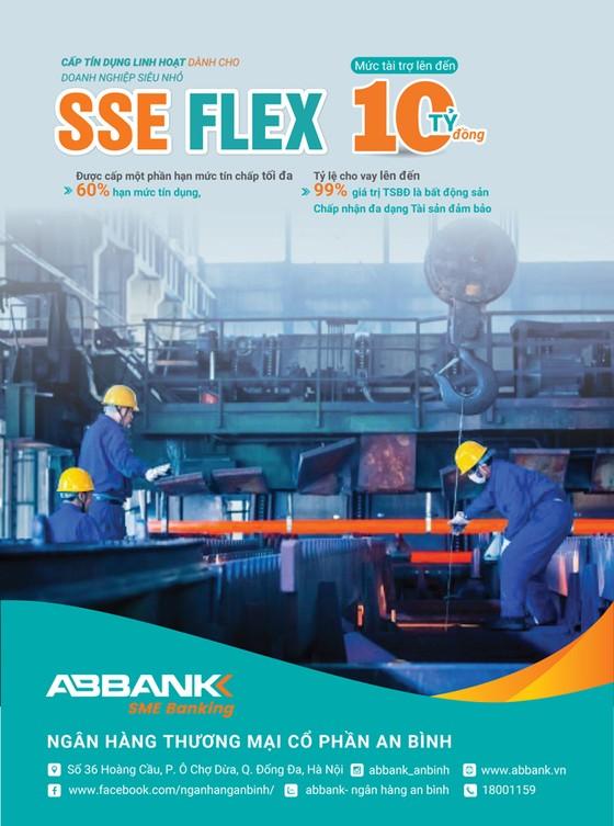 Doanh nghiệp SME và SSE thêm cơ hội vay vốn ảnh 2