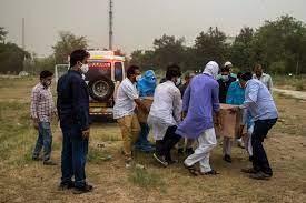 Nhà giàu Ấn Độ chi đậm thuê máy bay trốn đại dịch ảnh 2