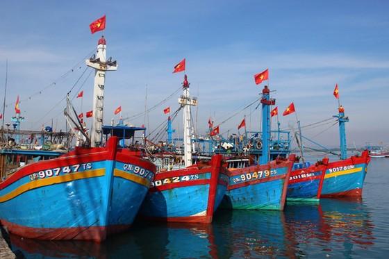 Đông Hải – Bạc Liêu sức hút từ tiềm năng kinh tế biển trọng điểm của ĐBSCL  ảnh 2