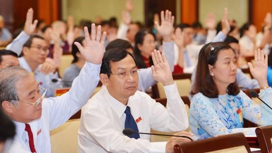 Kỳ họp thứ 9 HĐND TPHCM khóa IX: Xem xét hiệu quả quản lý đất công ảnh 3
