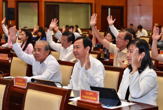 HĐND TPHCM họp bất thường về chính sách bổ sung cho người dân Thủ Thiêm ảnh 4