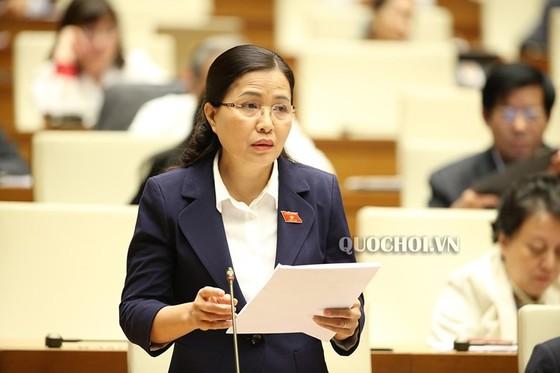 Công bố 5 Nghị quyết của Ủy ban Thường vụ Quốc hội   ảnh 1
