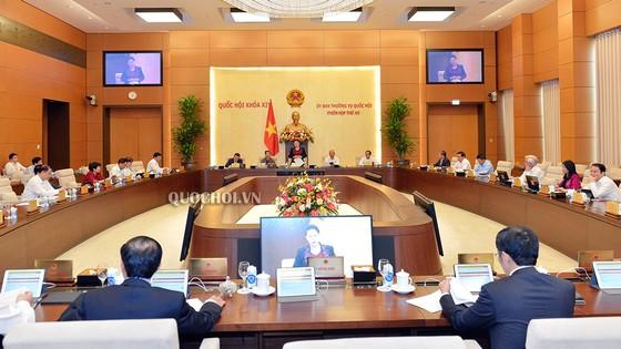 Lần đầu tiên Ủy ban Thường vụ Quốc hội giám sát việc thực hiện các FTA ảnh 1