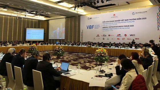 Chính phủ trân trọng và đánh giá cao những đóng góp của Diễn đàn Doanh nghiệp Việt Nam ảnh 1