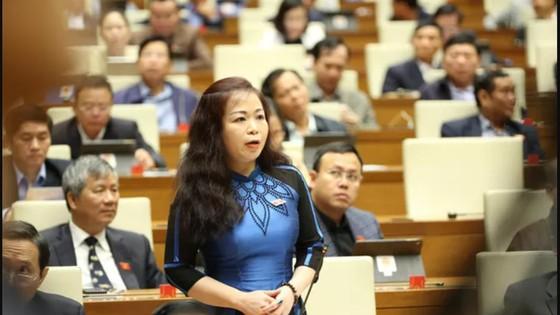 Quốc hội đã thể hiện rất rõ tính dân chủ qua những đổi mới trong hoạt động bầu cử, giám sát, xây dựng pháp luật ảnh 2