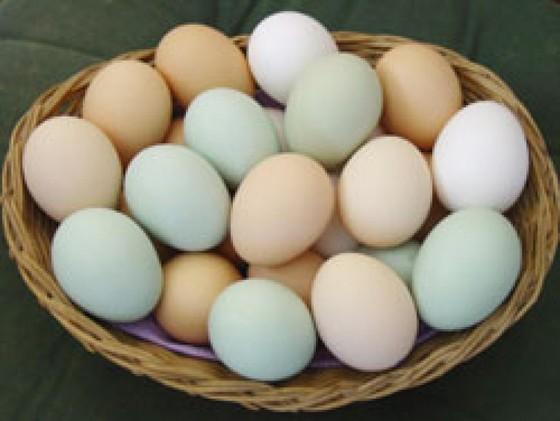 Trứng được tiêu thụ mạnh do… dịch Covid-19  ảnh 1