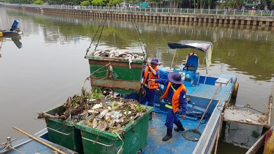 Cá chết hàng loạt trên kênh Nhiêu Lộc – Thị Nghè ảnh 1