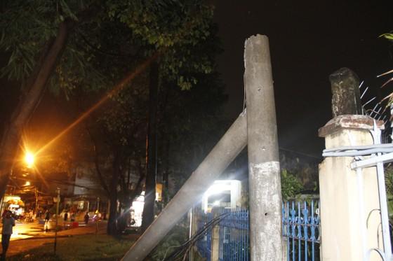 Cơn mưa lớn kèm gió mạnh làm bật gốc cây cổ thụ cao gần 20m ảnh 1