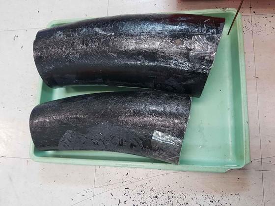 Phát hiện ngà voi được cất giấu trong thùng hàng tôm hùm qua đường hàng không ảnh 2