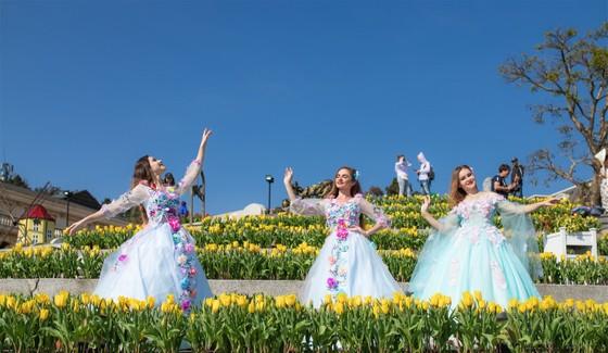 Thiên đường tulip hay điểm đến lý tưởng cho ngày Valentine và 8-3 ảnh 5