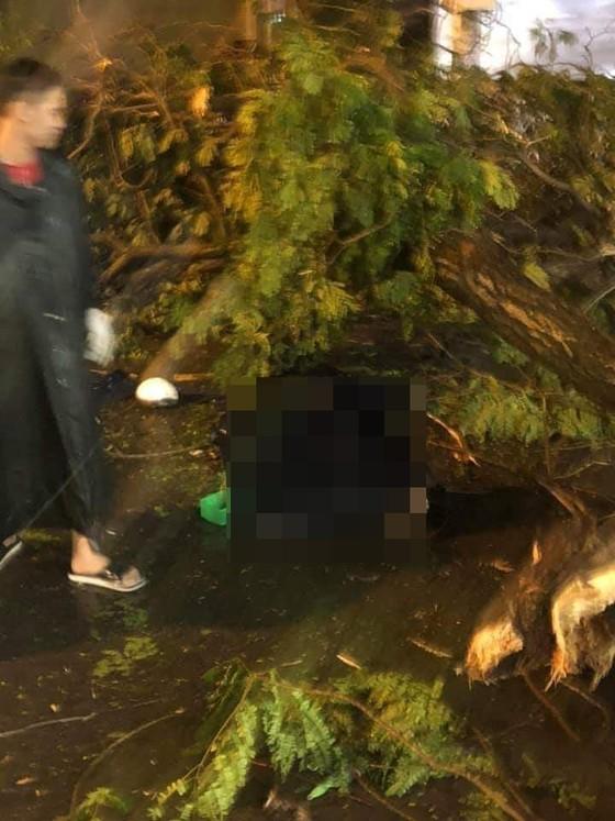 Thông tin mới nhất vụ cây xanh tét nhánh đè chết người ở quận 10 ảnh 1