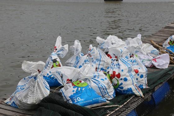 Cá lồng bè của 30 hộ nuôi chết hàng loạt, thiệt hại hơn 10 tỷ đồng ảnh 8