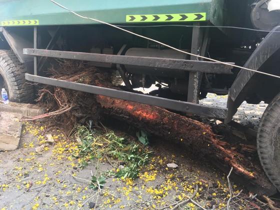Xe chở rác đổ dốc cầu đâm gãy gốc cây, nhiều người hoảng sợ ảnh 2