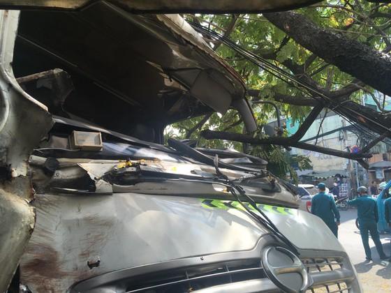 Xe chở rác đổ dốc cầu đâm gãy gốc cây, nhiều người hoảng sợ ảnh 1