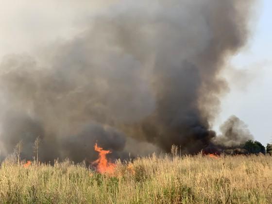 PCCC TPHCM nhận được 13 tin báo cháy cỏ trong 1 ngày ảnh 1