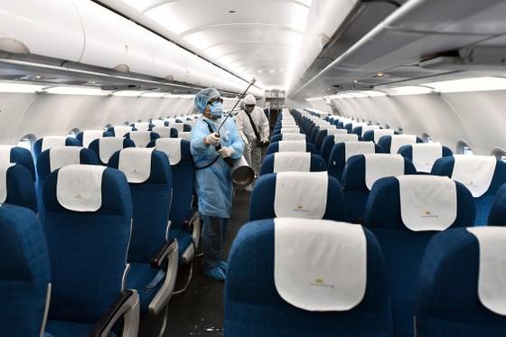Kiến nghị ưu tiên tiêm vaccine Covid-19 cho nhân viên hàng không để hạn chế lây nhiễm cộng đồng ảnh 1