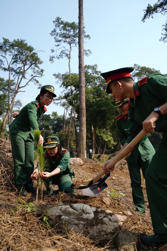 """Phủ xanh 2.000 cây Thông Mã Vĩ trên đồi cây """"Dâng Bác – Ơn Thầy"""" ảnh 14"""