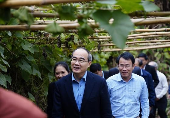 Đồng chí Nguyễn Thiện Nhân thăm và tặng quà tại tỉnh Bắc Kạn nhân dịp Xuân Canh Tý ảnh 5