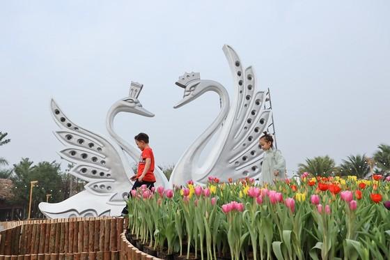 Dịp Tết thưởng thức 'Bản giao hưởng mùa xuân' lung linh tại Ecopark ảnh 2