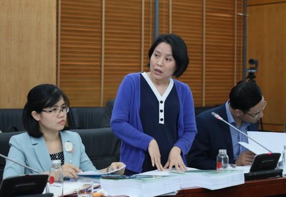 Hội đồng thẩm định thông qua đề án sắp xếp các đơn vị hành chính tại TPHCM  ảnh 5