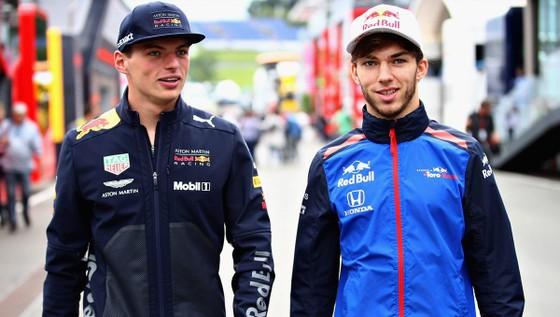 Pierre Gasly (phải) sẽ sát cánh cùng Max Verstappen từ mùa sau