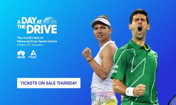 Nadal ám chỉ Djokovic khi nói về đề xuất cách ly, nhưng cả 2 sẽ xuất trận ở A Day at the Drive ảnh 1