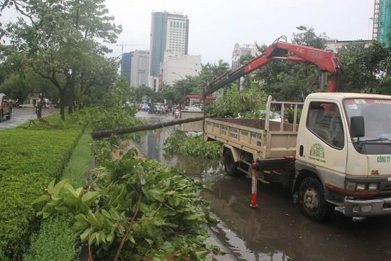 Hà Tĩnh: Bão số 2 đổ bộ khiến hàng loạt cây xanh, cột điện, biển hiệu... bị gãy đổ ảnh 29